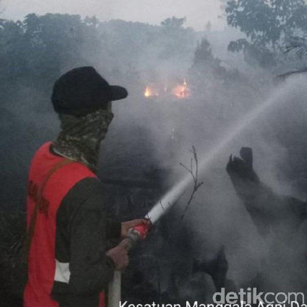 Dianggap Belum Maksimal Tangani Karhutla, Jokowi Diminta Buka Data HGU Hutan