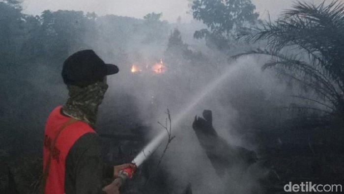 Foto: Karhutla di Singkawang (Antara Foto)