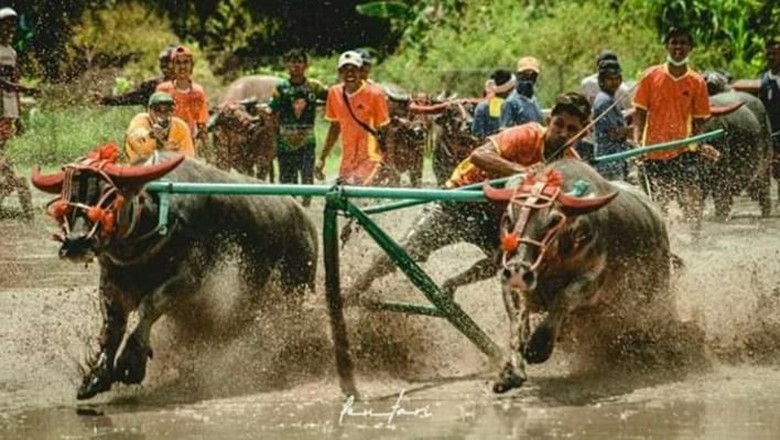 Foto: (Dispopar Sumbawa)