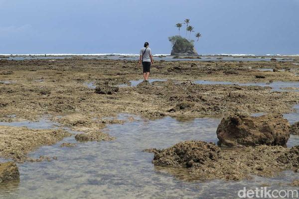 Apabila air tengah surut, traveler pun bisa berjalan kaki menuju pulaunya dengan memutari bibir pantai (Randy/detikcom)