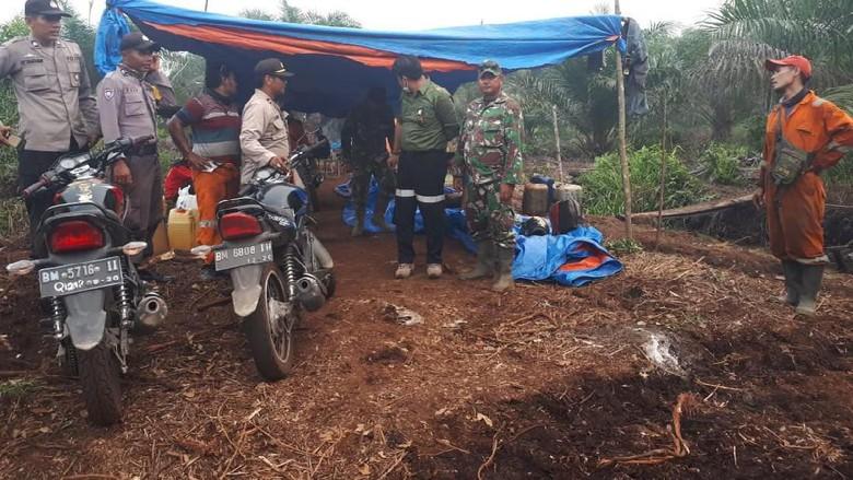 Padamkan Karhutla, Tim Gabungan Temukan Jejak Harimau di Pelalawan