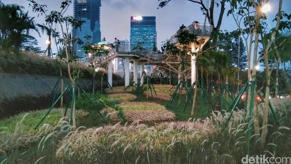 Ini adalah mini hutan pinus. menciptakan area suasana hutan tropis di tengah Kota Jakarta. (Tasya/detikcom)