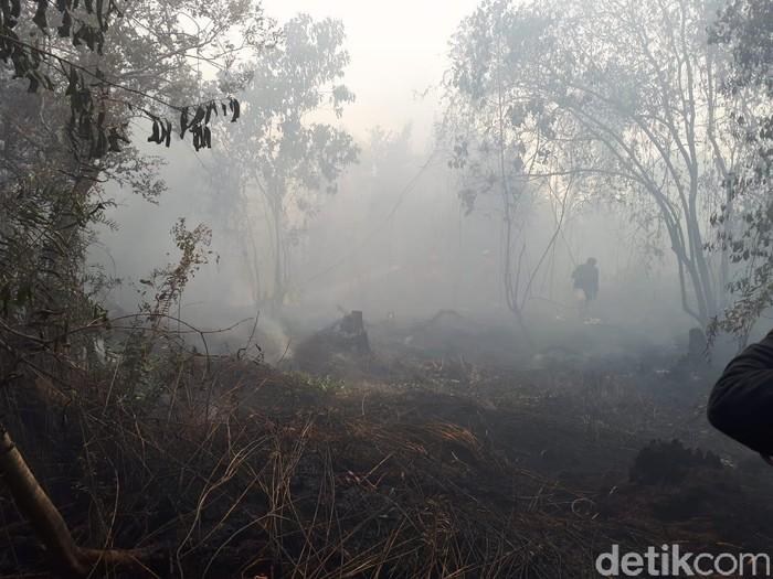 Ilustrasi kebakaran hutan dan lahan (Foto: Chaidir Anwar Tanjung-detikcom)
