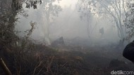 Polisi Tangkap 2 Warga Pembakar Lahan di Inhil Riau