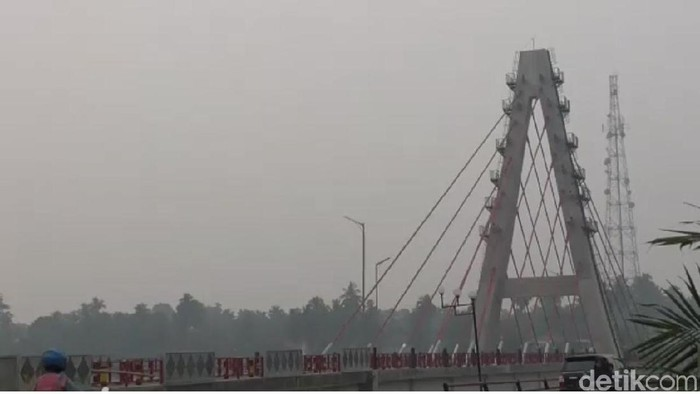 Kabut asap menyelimuti Dharmasraya, Sumbar. (Jeka/detikcom)