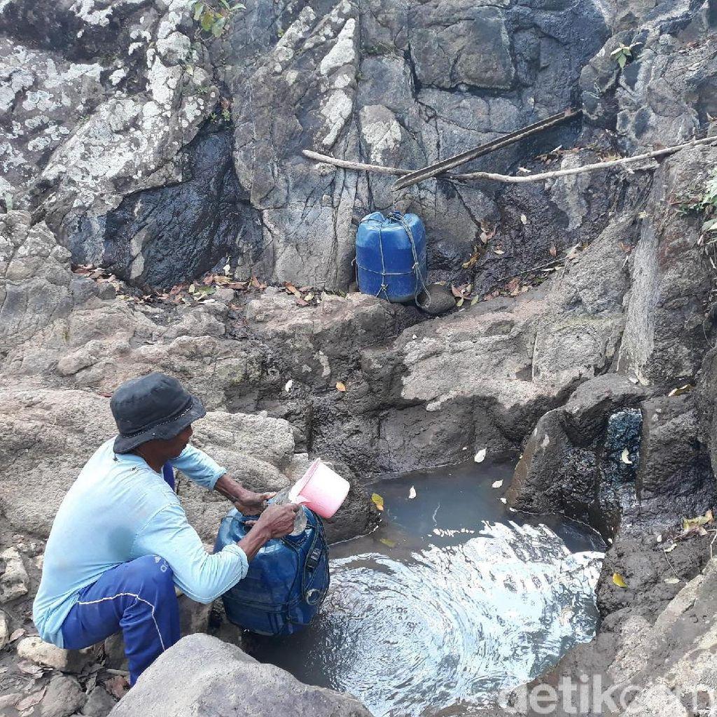 Cari Air Bersih, Warga di Gunungkidul Manfaatkan Rembesan Pohon Beringin