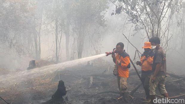 Karhutla Indonesia Berimbas ke Tetangga, Disorot Media Asing