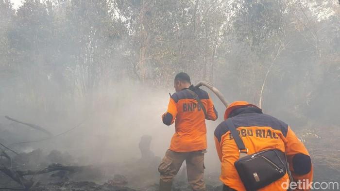 Petugas gabungan dari TNI, Polri dan BNPB turun langsung memadamkan api di lokasi kebakaran hutan dan lahan Merbau, Riau. Begini aksi mereka.