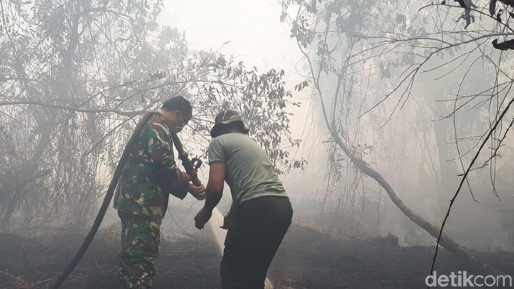 Seberapa Aman Ibu Kota Baru Dari Kebakaran Hutan?