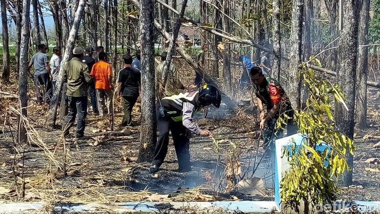 60,5 Hektare Hutan di Ponorogo Terbakar Selama Empat Bulan
