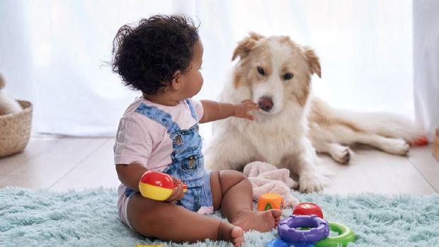 ilustrasi anak dan hewan peliharaan