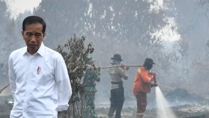 Presiden Jokowi saat meninjau lokasi karhutla di Merbabu, Riau (Foto: Laily Rachev - Biro Pers Sekretariat Presiden).