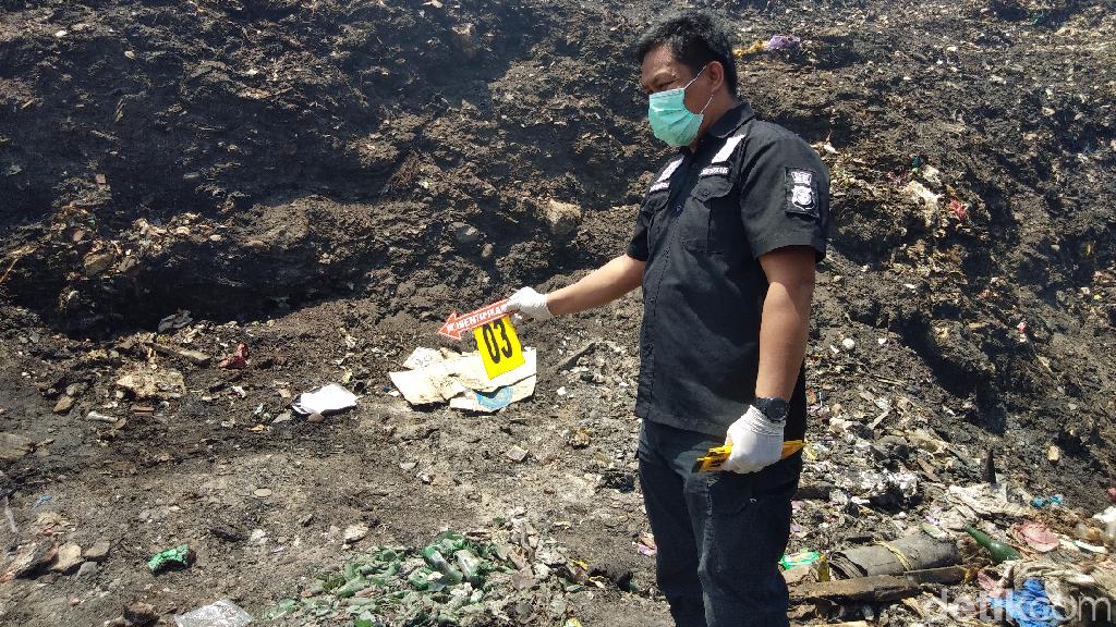 Puluhan Ekor Sapi Dilaporkan Mati Akibat Kebakaran TPA Antang Makassar