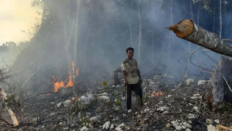 Polisi Jerat 9 Tersangka terkait Pembakaran 29 Ha Lahan di Berau Kaltim