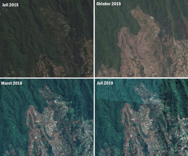 Hutan Pesugulan tahun 2015 penuh dengan tegakan pohon, sejuk dan rindang. Pada 2019 telah berubah menjadi gundul akibat kegiatan Pemanfaatan Kawasan Tanpa Izin (PKTI) (BTNGR/Instagram)