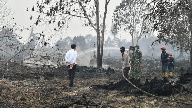 Pak Jokowi, Ratusan Ribu Rakyat Kena ISPA gegara Karhutla