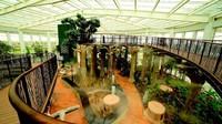 Di dalam The Glass House dapat ditemukan 29 ragam tanaman dan pohon yang tertera dalam Al-Qur'an, termasuk pohon zaitun dan pohon ara, tanaman henna dan lidah buaya, dan masih banyak lagi. (Foto: Dubai Tourism)