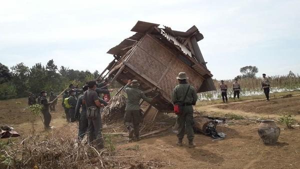Eksekusi dimulai. Operasi Simpatik di Hutan Pesugulan, Balai TN Gunung Rinjani bersama para pihak berwenang melakukan perobohan gubuk dan pembersihan kawasan hutan dari tanaman non kehutanan (BTNGR/Instagram)