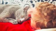 So Sweet! Pengantin Pria Jadikan Kucingnya Best Man di Hari Pernikahan