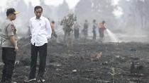 PDIP soal Sepatu Kotor Jokowi: Fadli Ubah Puisi Jadi Opini