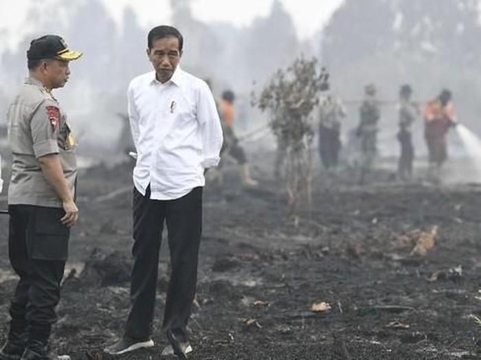Jokowi saat meninjau karhutla di Riau. Foto: ANTARA FOTO/Puspa Perwitasari
