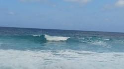 Bagian Tubuh Ditemukan di Pantai Bekasi, Polisi Duga Korban Sriwijaya Air