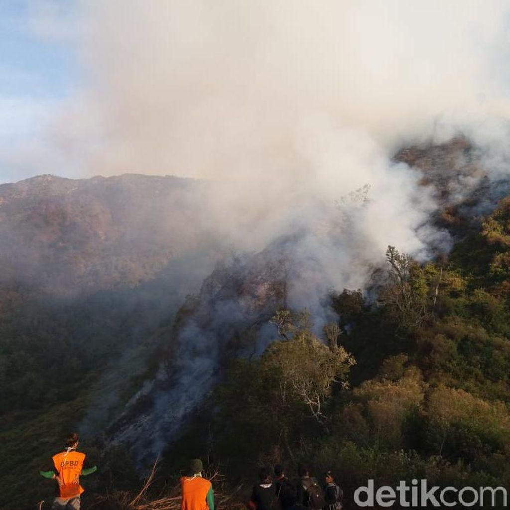 Kebakaran Hutan di Gunung Slamet Meluas Hingga Wilayah Banyumas