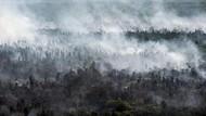 Titik Api Karhutla Makin Banyak, Udara Kalbar-Kalteng Berbahaya