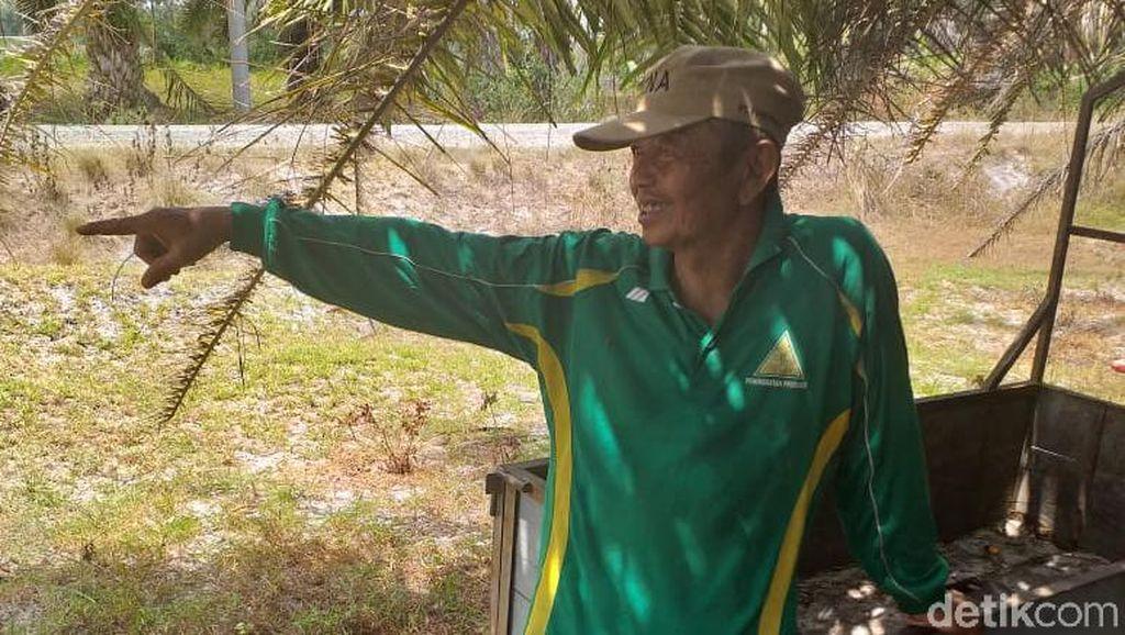 Kisah Ngeri Transmigran di Ibu Kota Baru RI yang Kena Malaria