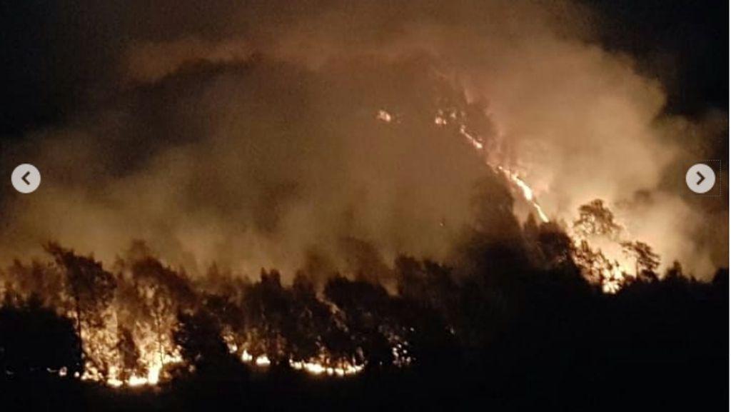 Semeru Kebakaran, Puluhan Pendaki Dievakuasi