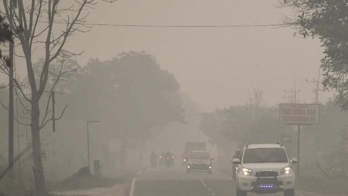 Kendaraan melintas di Jalan Trans Kalimantan yang diselimuti asap di daerah Palangkaraya, Kalimantan Tengah, Selasa (17/9/2019). (Foto: ANTARA FOTO/Hafidz Mubarak A/ama)