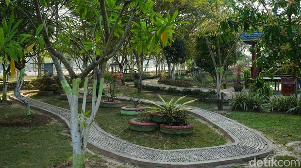Kisah Cinta Abadi di Taman Bunga Rozelin