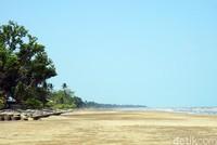 Di pinggir pantai, ada banyak pepohonan sehingga membuat suasana jadi rindang dan sejuk. Ada juga warung penjual makanan di sepanjang garis pantai. (Wahyu Setyo/detikcom)