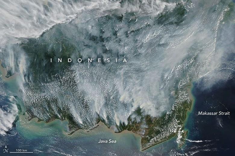Karhutla Kalimantan Disorot NASA, Komisi IV Minta Pemerintah Kerja Ekstra