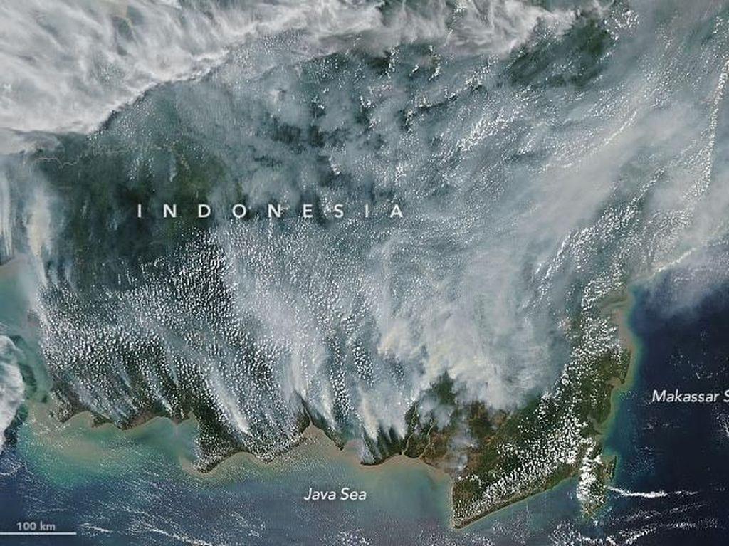 Foto-foto satelit NASA, dipajang di situs resmi NASA Earth Observatory. Tampak Pulau Kalimantan yang berselimut asap putih (dok NASA)