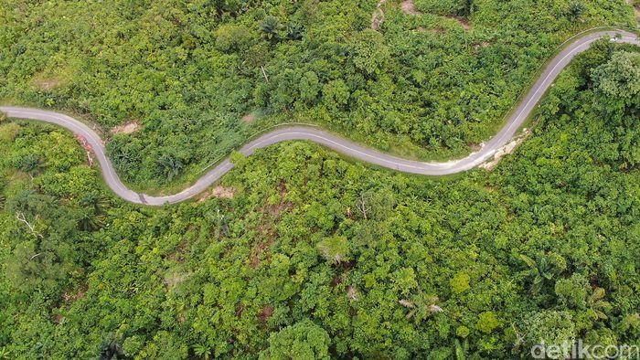 Perjalanan tersebut ditempuh dalam waktu sekitar 3 jam. Terlihat jalan tersebut dikelilingi oleh hutan di kanan kiri jalannya.