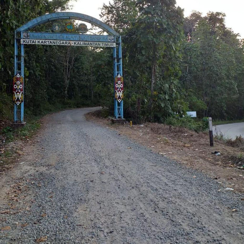 Pemerintah Diminta Siapkan Penanganan Lingkungan di Ibu Kota Baru