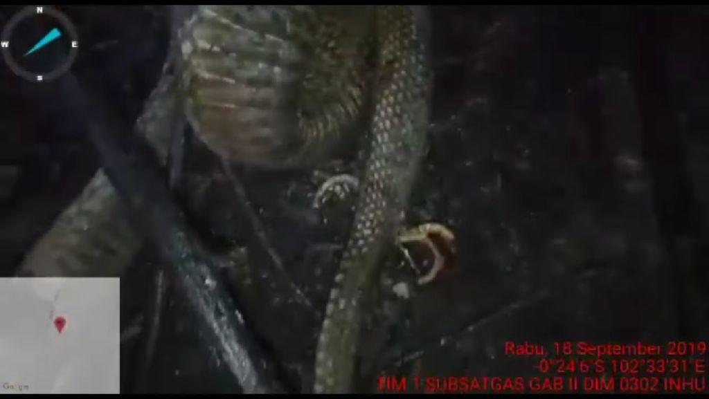 Cerita ular berkaki ini diawali kehebohannya dengan video Youtube dari Kantor Penanggulangan Bencana Daerah, Indragiri Hulu saat tim mereka memadamkan kebakaran hutan (dok KPBD Indragiri Hulu)