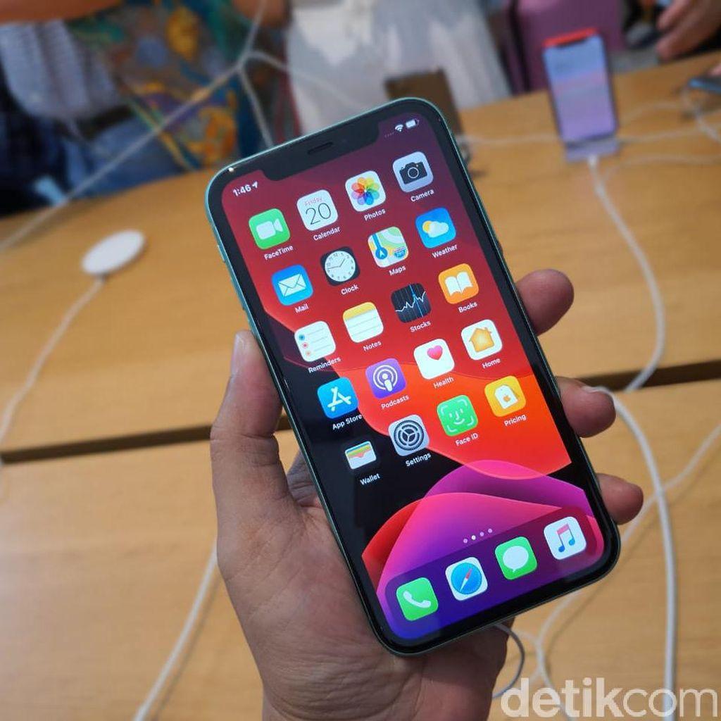 Peluncuran iPhone Diprediksi Jadi Dua Kali Setahun