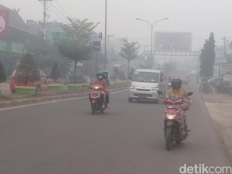 Kabut Asap Karhutla Masih Pekat: Udara Tak Sehat, Aktivitas Terhambat