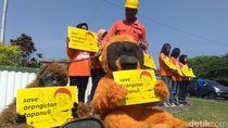 Gelar Aksi di UGM, Aktivis Lingkungan Serukan Keprihatinan pada Orang Utan