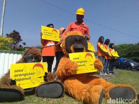 Adviser PLTA Batang Toru: Kami Dituduh Musnahkan Orangutan, Lewat Mana?