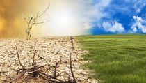 Perubahan Iklim Membuat 5 Makanan Enak Ini Terancam Punah