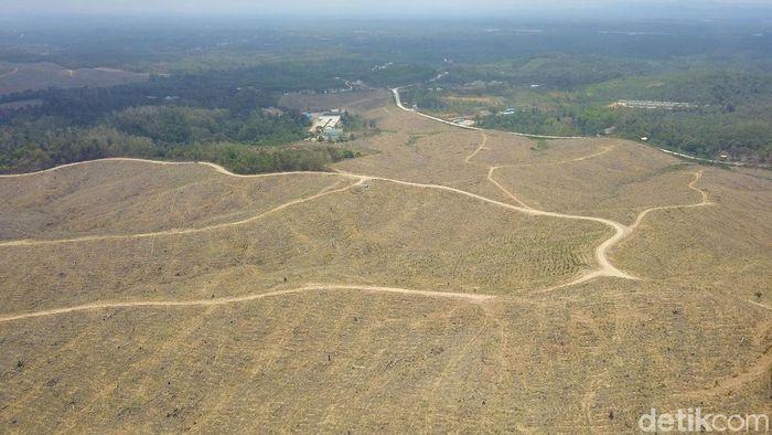 Kecamatan Sepaku di Kabupaten Penajam Paser Utara disebut sebagai lokasi Ibu kota baru. Pemilihan lokasi ini diduga karena di Sepaku banyak lahan negara.