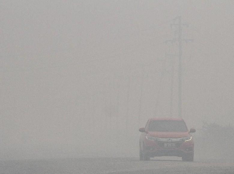 Kabut Asap Masih Selimuti Riau, Jarak Pandang di Pelalawan 400 Meter