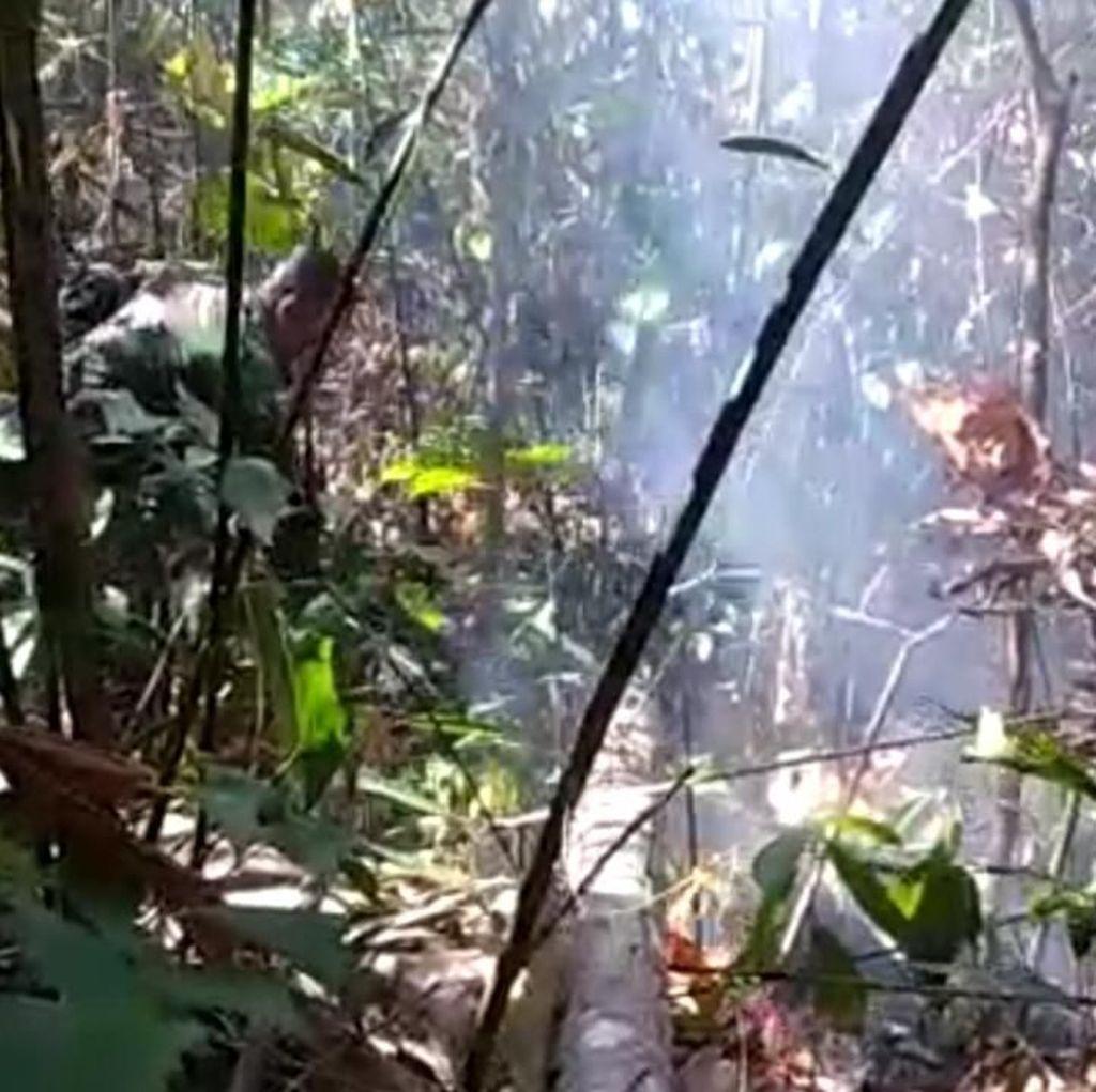 Hutan Lindung Gunung Klabat Terbakar Sekitar 45 Hektare