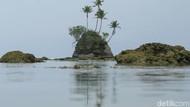Pulau SpongeBob di Aceh Akan Dikelola Jadi Destinasi Pariwisata Andalan