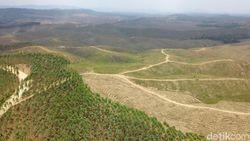 Bendungan Rp 700 M Dibangun di Ibu Kota Baru Tahun Depan