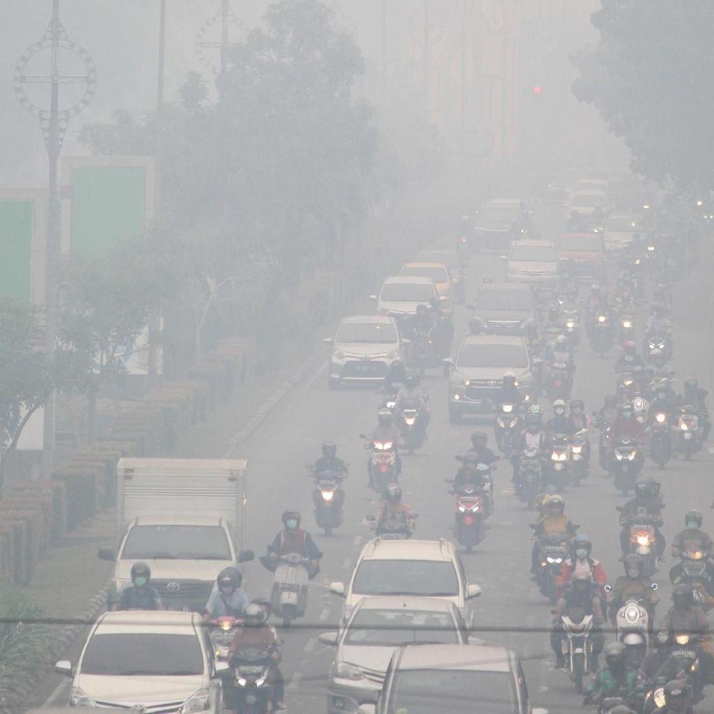Komisi IV DPR ke Pemerintah soal Karhutla: Cepat Padamkan Api!