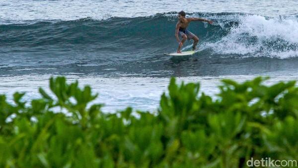 Pulau Simeulue, Aceh, jadi salah satu destinasi andalan bagi para pecinta surfing. Ombaknya yang menantang jadi magnet bagi para penikmatnya. (Rifkianto Nugroho/Detikcom)